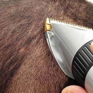 strzyżenie włosów maszynką