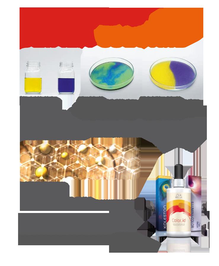wella-color-id-infografika-2