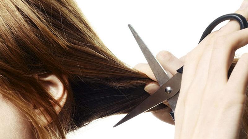Nożyczki do strzyżenia