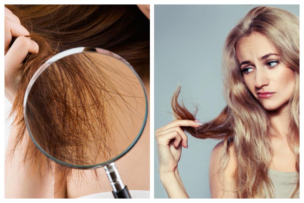 regeneracja zniszczonych włosów
