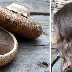 mushromm brown hair czyli trend na jesień