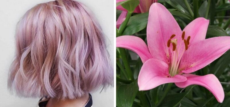 waniliowo-liliowe włosy, kolorowe włosy, fioletowe włosy
