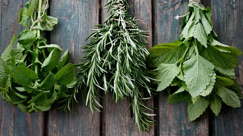zioła dla włosów, zioła do włosów, zioła, zielarnia, ziołowa pielęgnacja