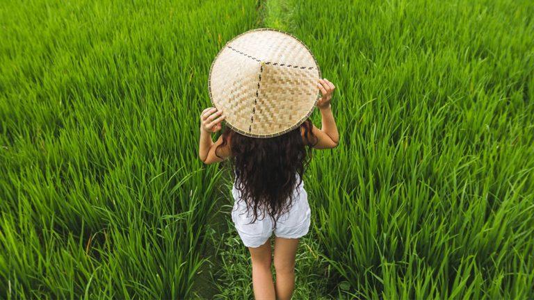 woda ryżowa na włosy, woda ryżowa do włosów, woda ryżowa efekty na włosach, jak stosować wodę ryżową