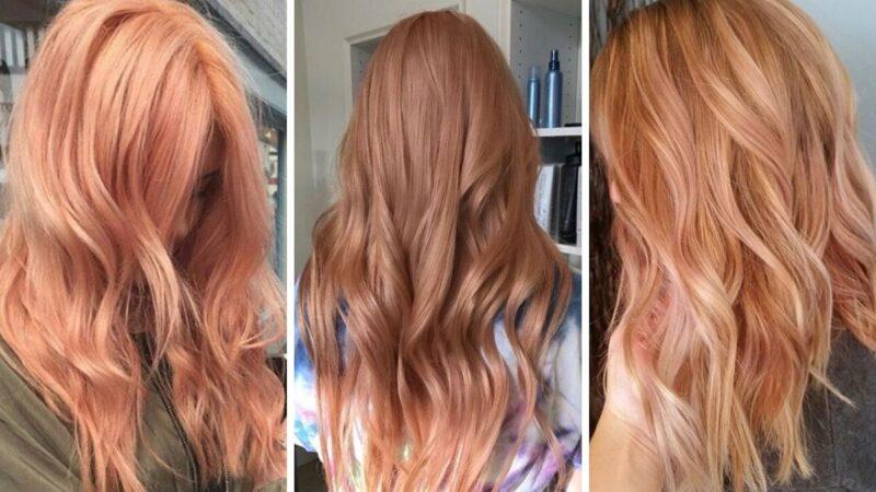 dyniowy róz, dyniowe włosy, pumpkin rose hair