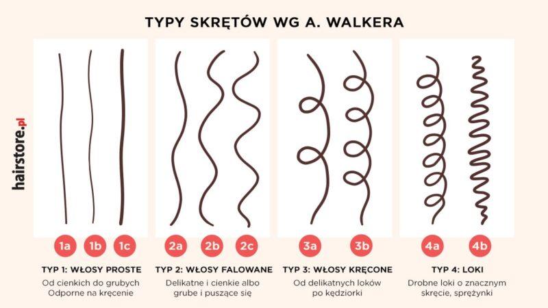 typy skrętu włosów, typologia włosów a. walkera