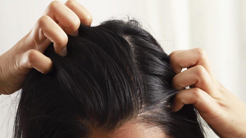 Wcierki do włosów – hit w pielęgnacji!