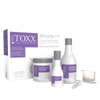 Hair Toxx, profesjonalny zestaw do krioterapii włosów, 2x500ml+120ml