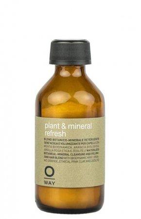 OWay Plant&Mineral Refresh, suchy szampon dodający objętości, 36g