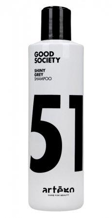Artego Shiny Grey '51, szampon do włosów rozjaśnianych, 250ml