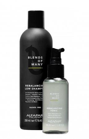 Alfaparf Blends of Many, zestaw kosmetyków przeciwłupieżowych, 250ml + 100ml